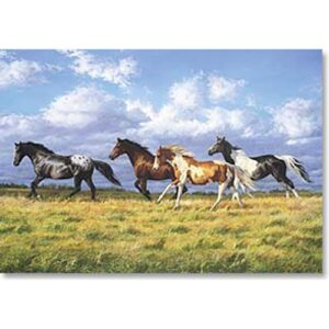 Running Free - Large Blank Card-0