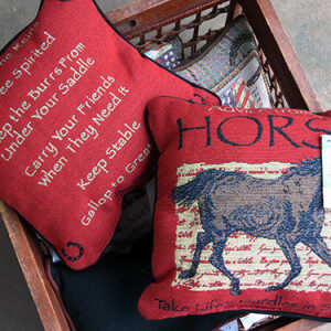 Advice From A Horse - Filled Cushion-0