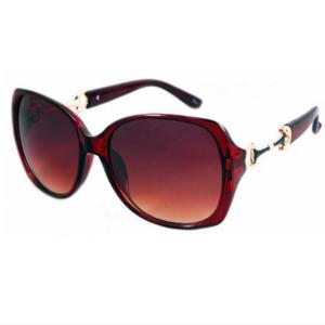 Snaffle Bit Sunglasses-0