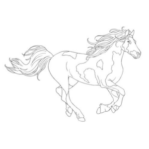 Creative Haven - How to Draw Horses Book-3792